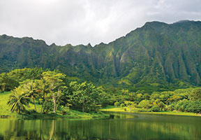 HAWAIIAN STYLE MAGAZINE REVIEWS PHOTOGRAPHIC MONOGRAPH BY DAVID LEASER
